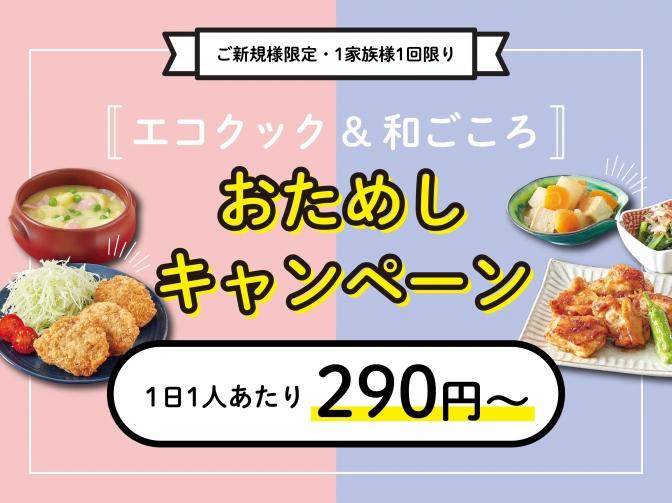 半額キャンペーン【エコクック&和ごころ】